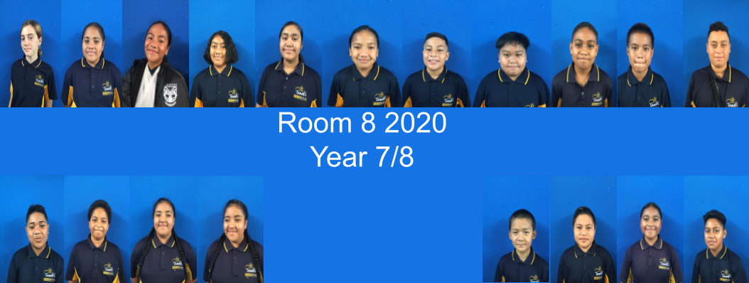 Room 8 @ Tamaki Primary School