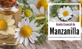 El aceite esencial de manzanilla uno de los más populares por sus propiedades antialergénicas