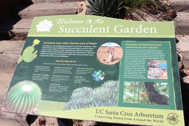 UCSC Arboretum signage
