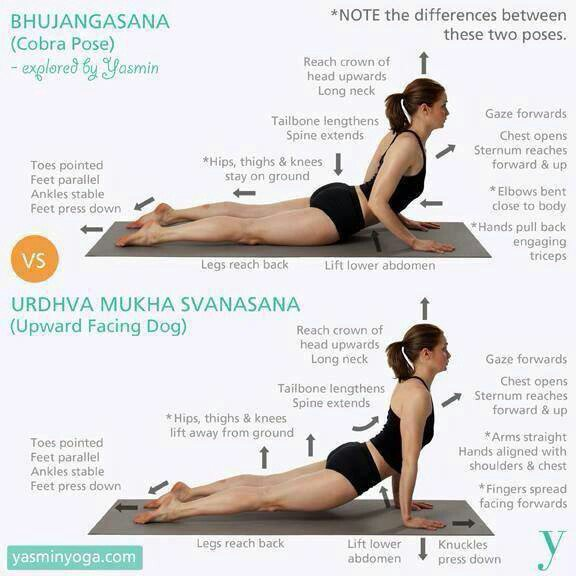 Benefits of Cobra Pose