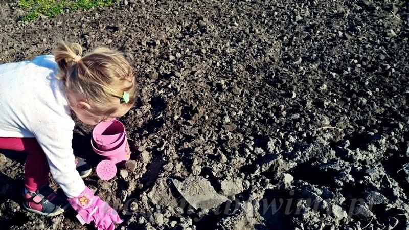 Ogródek i Montessori