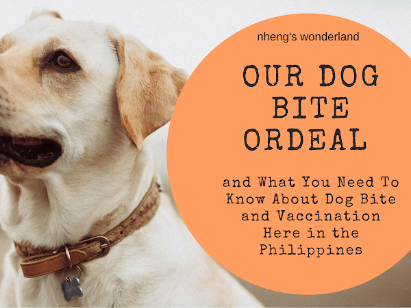 Our Dog Bite Ordeal and What You Need To Know About Dog Bite and Vaccination Here in the Philippines