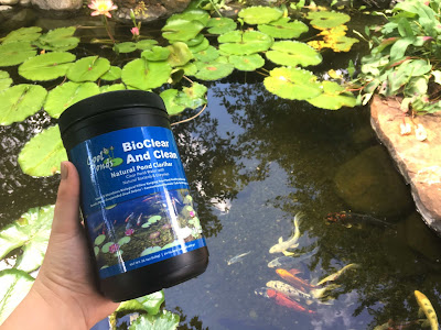 bioclear and clean natural bacteria cool ponds