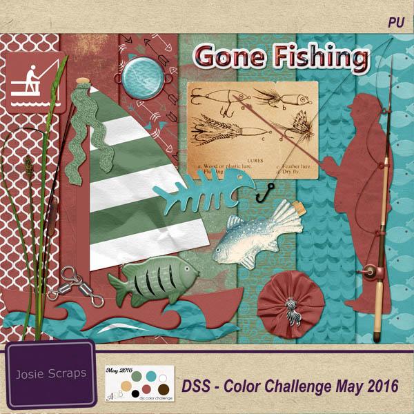 DSS Color Challenge