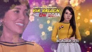 Lirik Lagu Bidadari Sexi - Via Vallen