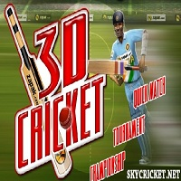 Play Online 3D Cricket Game