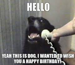 very very funny birthday meme