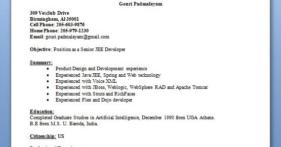 senior jee developer sample resume format in word free download