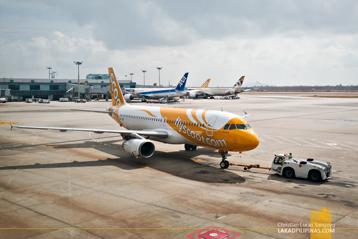 Scoot Review Manila to Singapore to Australia Boeing Dreamliner 787