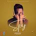 [Music] : Feezy - Spy