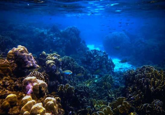 Menikmati Wisata Bahari Seru di Aceh, wisata aceh, wisata indonesia, tempat menarik, nusantara, wisata alam, wisata bahari