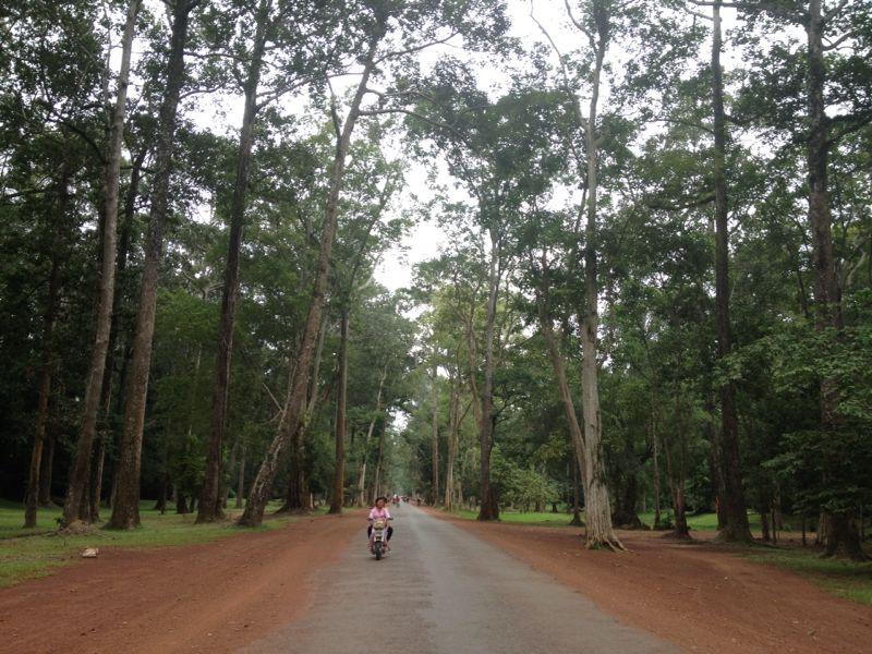 Caminos Angkor