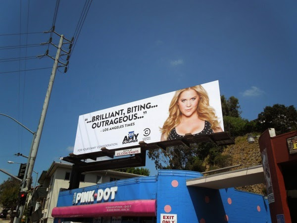 Inside Amy Schumer 2014 Emmy Consideration billboard