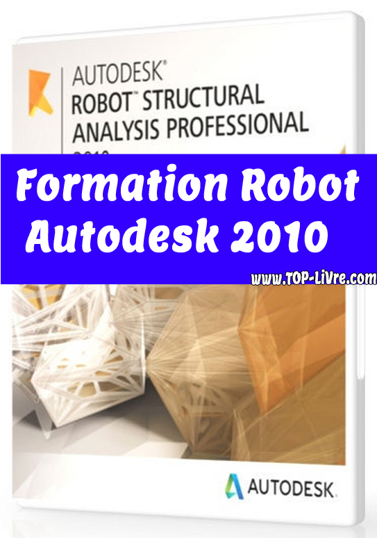 Formation Robot Structural Analysis Professional 2010