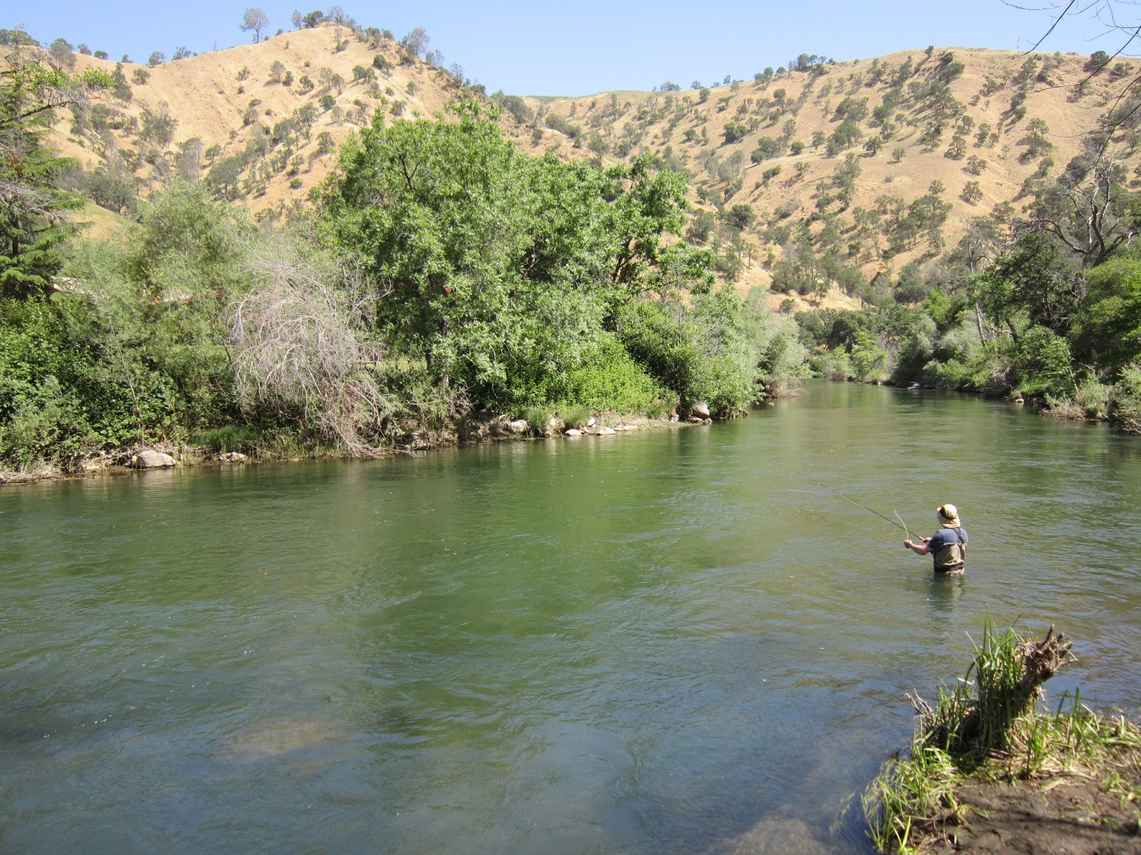 Rob russell 39 s northern california fly fishing for Putah creek fly fishing