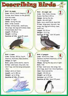 describing-birds_wordsearch-ESL-EFL-downloadable-printable-worksheets-practice-exercises-and-activities-to-teach-about-birds-picture-dictionaries