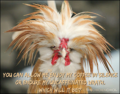 You can allow me to enjoy my coffee in silence or endure my uncaffeinated wrath. Which will it be?