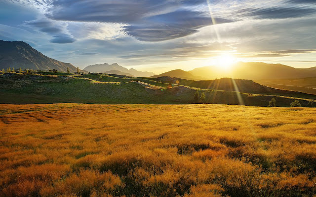 meadow new zealand wallpaper sunset peace of mind
