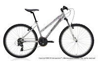 26 Inch Polygon Premier 2.0 Mountain Bike Lady