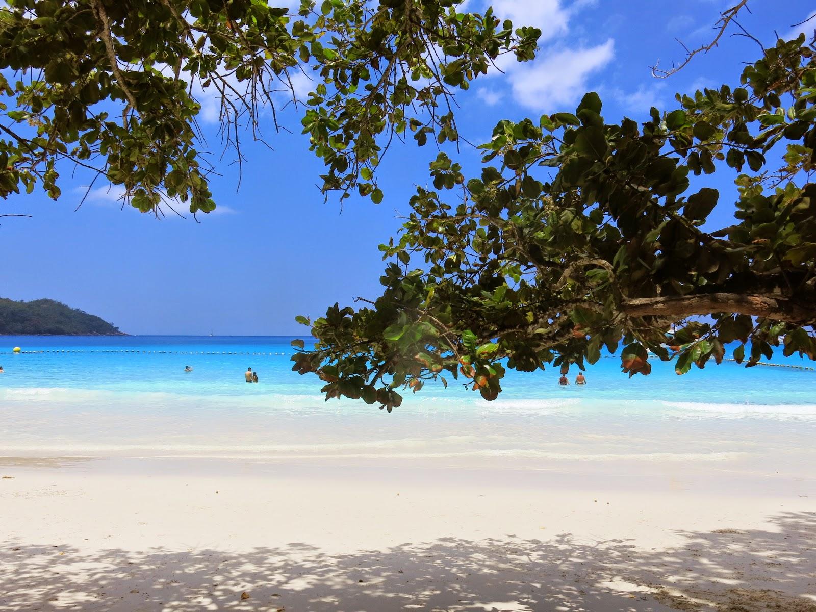 Anse Lazio på Seychellerna
