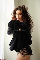 Seerat Kapoor Latest Portfolio Pics Stunning Beauty 02.jpg