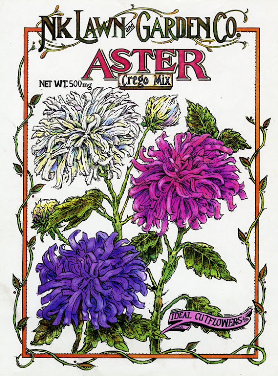 Aster packet