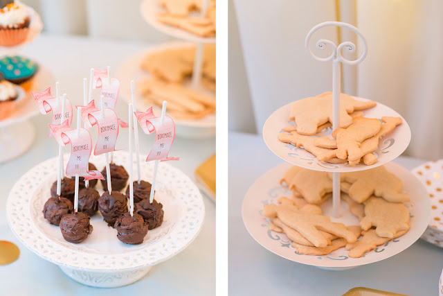 pastel jungle party, birthday candy bar, chocolate cake pops, animal cookies