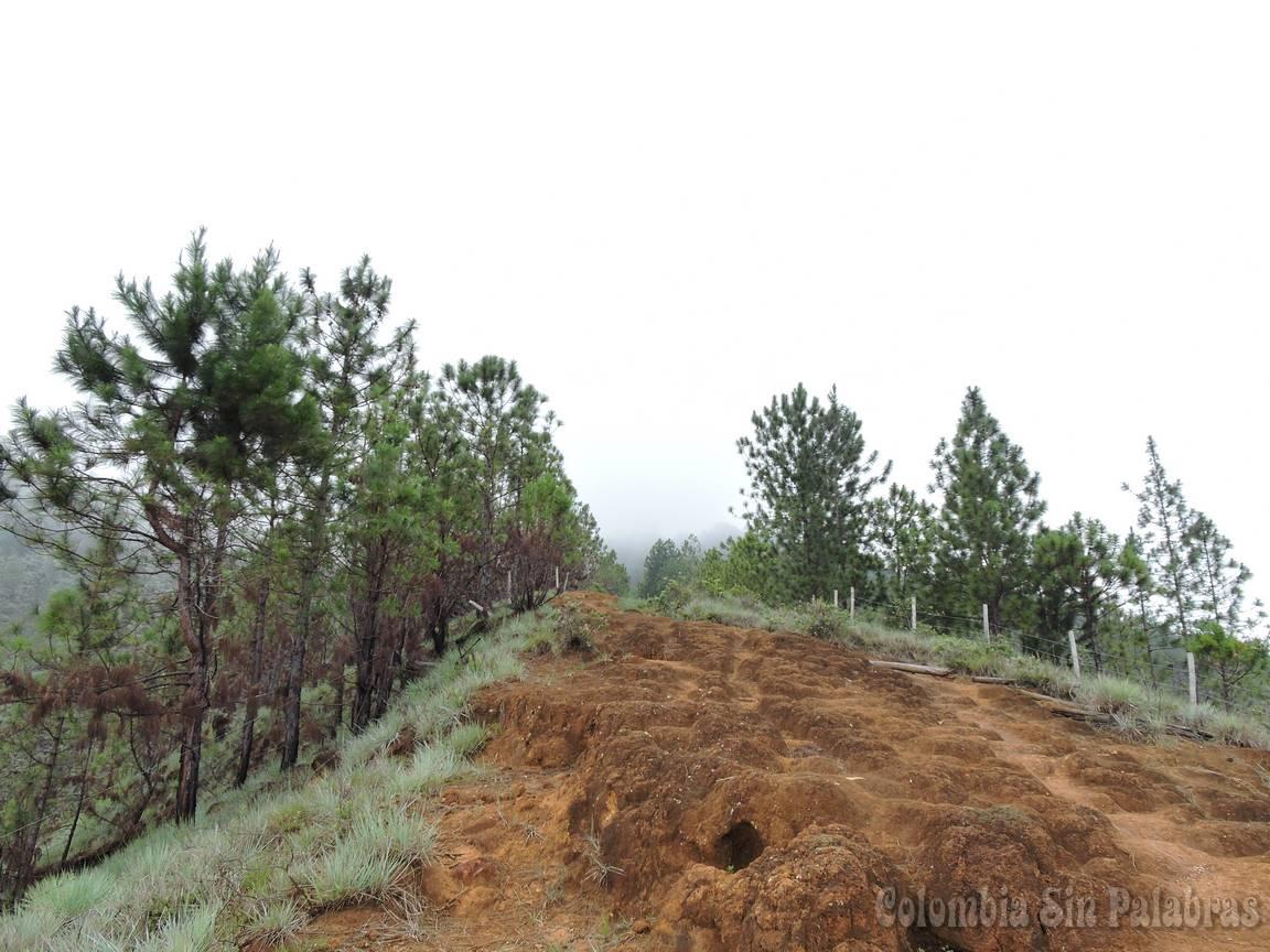 camino de tierra para subir al cerro quitasol