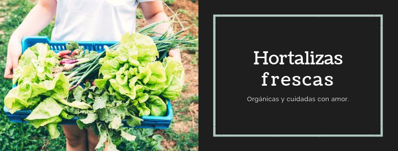 La importancia de tener un huerto urbano. Hortalizas gratis y orgánicas!
