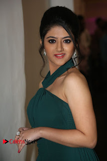 Actress Shriya Sharma Pictures in Long Dress at Nirmala Convent Audio Launch 0098