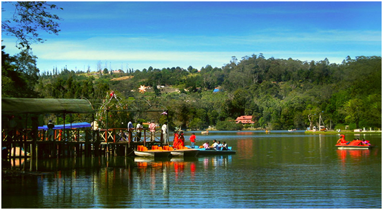 place to see in Kodaikanal, Tamil Nadu