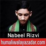 http://www.humaliwalayazadar.com/2016/11/nabeel-rizvi-nohay-2017.html
