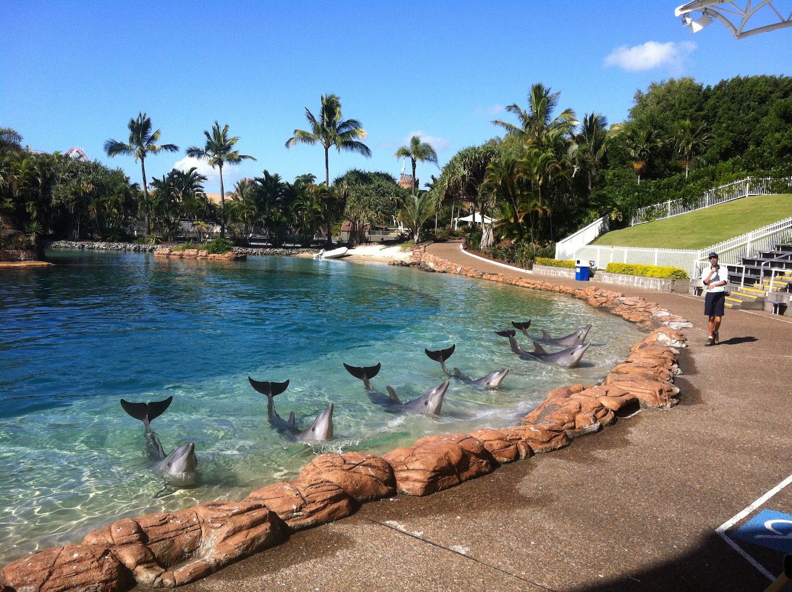 Maid In Australia Sea World Part Two And A Giveaway