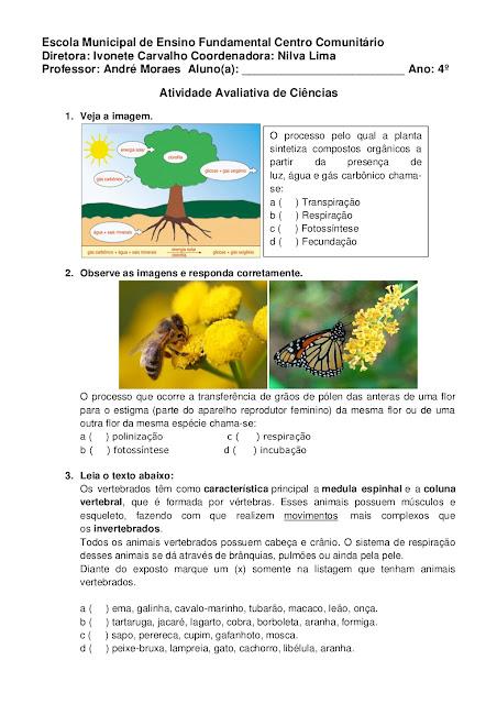 Vertebrados e Invertebrados Atividades