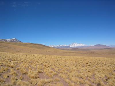 Pular volcano