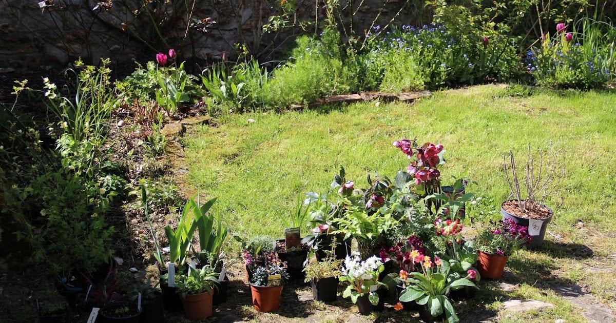 Derri re les murs de mon jardin retour de saint jean for Derriere les murs de mon jardin