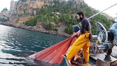 Excursiones en barco de pesca en Mallorca con Pescaturismo