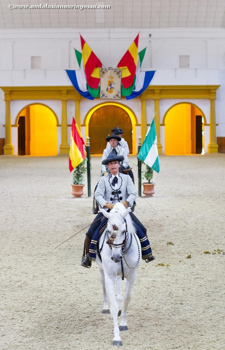Andalusian kuninkaallinen hevoskoulu Jerez_Andalusian Royal Equestrian School Jerez_3