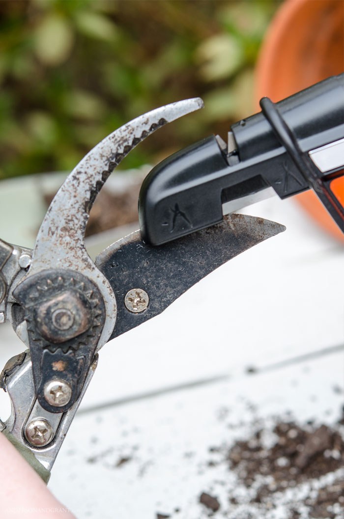 Keeping your garden tools sharp is important for the health of your garden and landscaping.   Find out about one simple gadget you can use to effortlessly maintain a sharp blade.  #garden #summermaintenance #gardening #gardentools #andersonandgrant