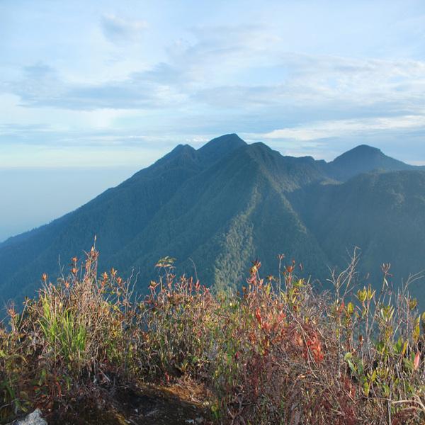 Gunung Borni Telong di Bener Meriah, Aceh