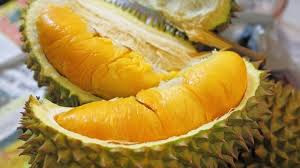 The Amazing Of Health Benefits Of Durian For Health -Healthy T1ps