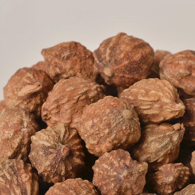 Quả Ích trí - Alpinia oxyphylla - Nguyên liệu làm thuốc Chữa Bệnh Tiêu Hóa