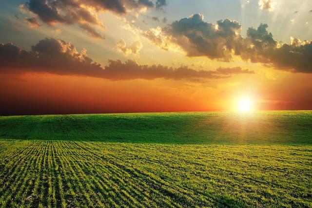 Tarıma Destek Veren Yenilikçi Sanayi Kolları