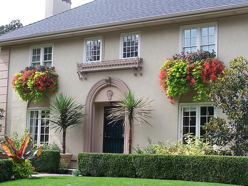 Dr Dan S Garden Tips A Bountiful Box Of Beauty