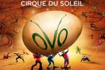 https://b-is4.blogspot.com/2017/08/must-see-ovo-cirque-du-soleil-show.html
