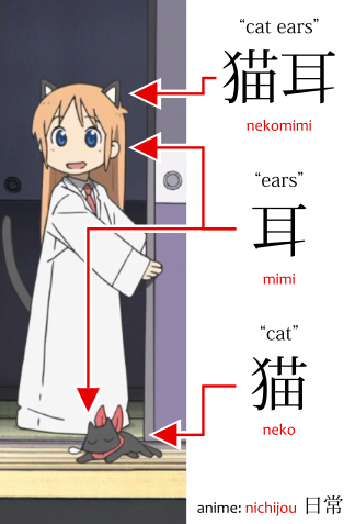 What is nekomimi and the difference between nekomimi and cat ears show in a diagrama with the character Hakase from the anime Nichijou.