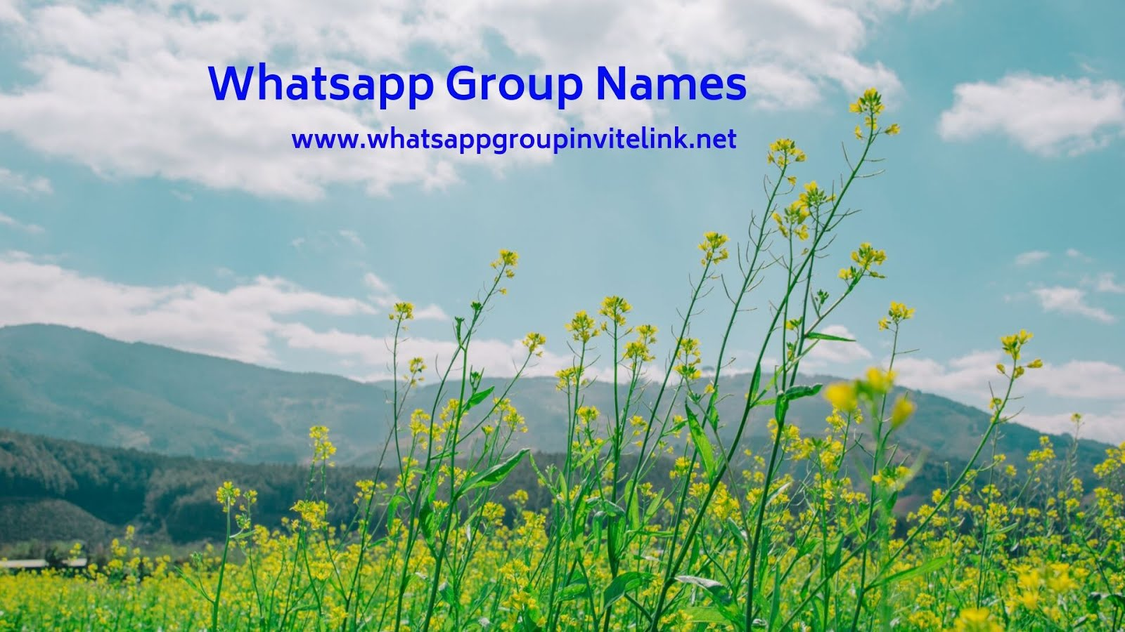 Whatsapp Group Invite Links: Whatsapp Group Names