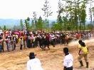 Tempat Wisata Yang Ada di Kabupaten Bener Meriah