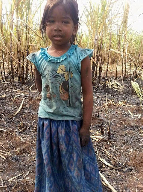 Instead of Studying, This Poor Little Girl is Working in the Fields!