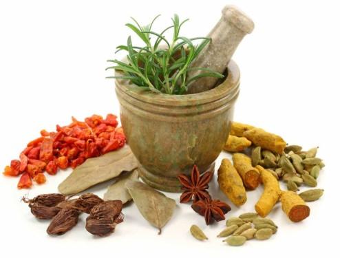 Jamu Herbal Untuk Unggas